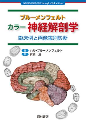 『ブルーメンフェルト カラー神経解剖学』